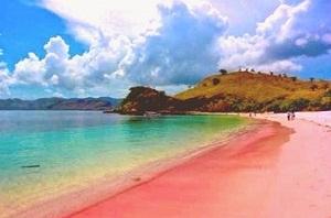 pantai-pulau-merah-banyuwangi