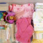 Perlengkapan Bayi Ini Wajib Dibawa Pada Saat Travelling