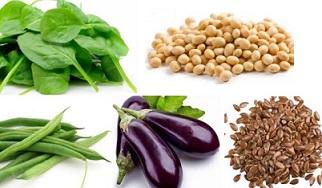 sayuran penurun kolesterol