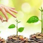 Pentingnya Jaminan Pemerintah Dalam Suatu Investasi