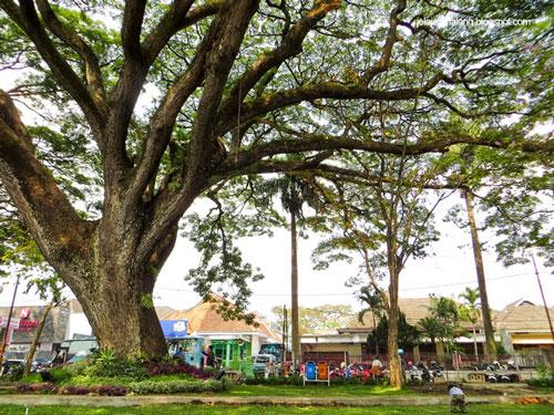 Taman Trunojoyo Malang