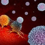 Ini yang Terjadi Saat Sistem Imun Tubuh Bertindak Terlalu Aktif