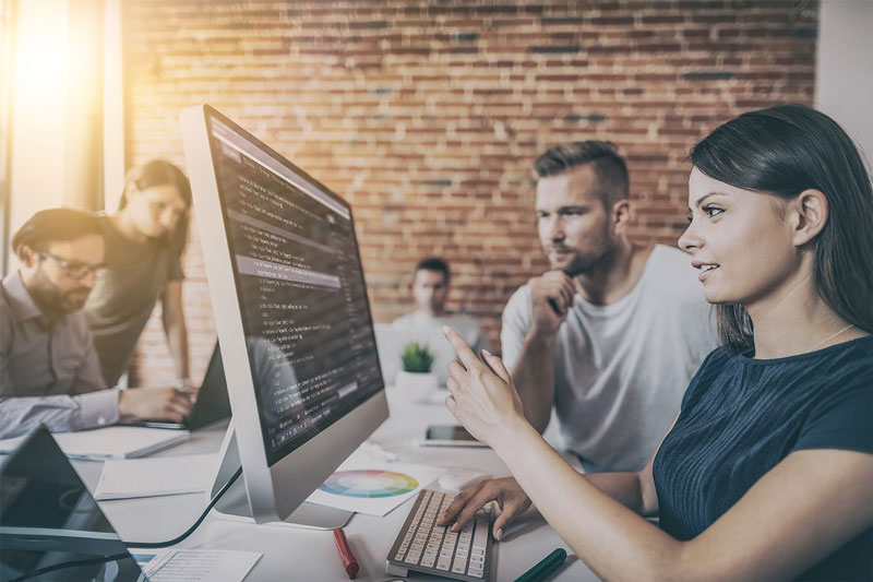 Jasa Web Developer Profesional