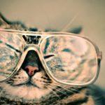 Cara Mudah Bersihkan Lensa Kacamata di Rumah